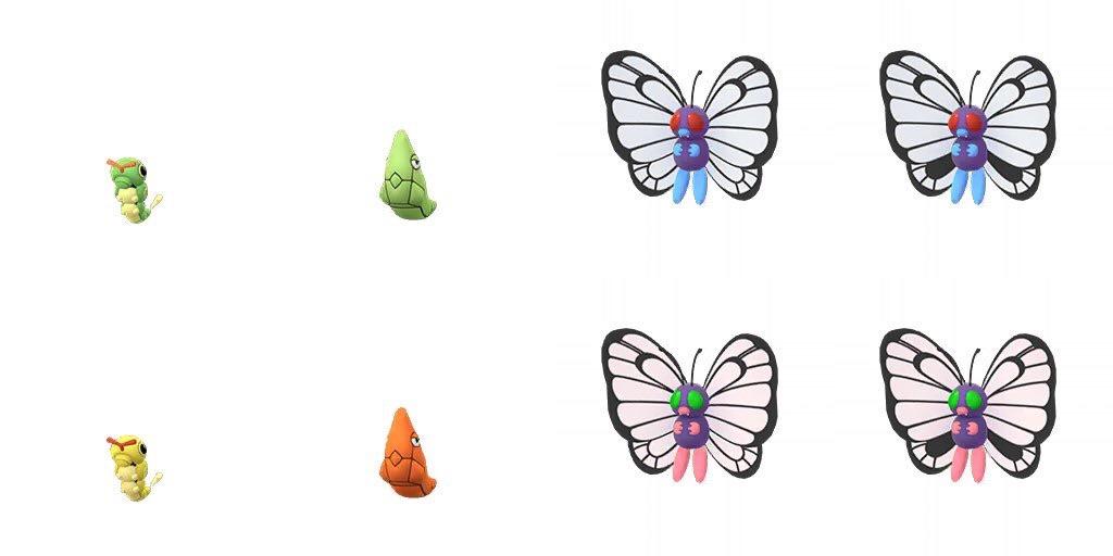 chenipan-papillusion-shiny-pokemon-go